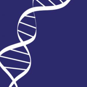 Web portal at the Animal Genetics Symposium